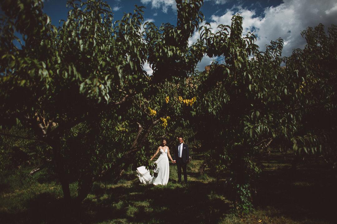Palisade-Colorado-Wedding-065.JPG