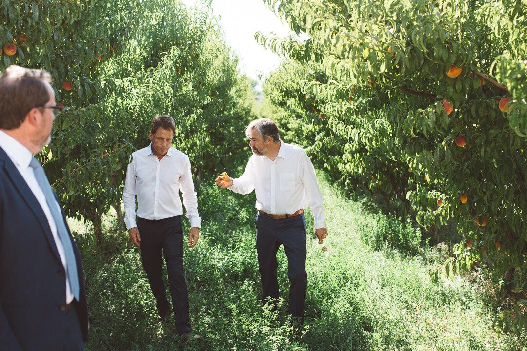 Palisade-Colorado-Wedding-105.JPG