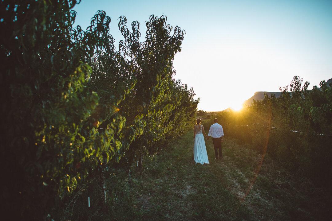 Palisade-Colorado-Wedding-232.JPG