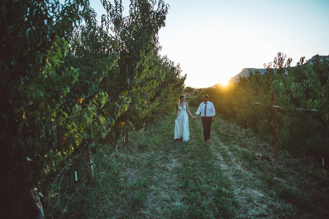 Palisade-Colorado-Wedding-233.JPG