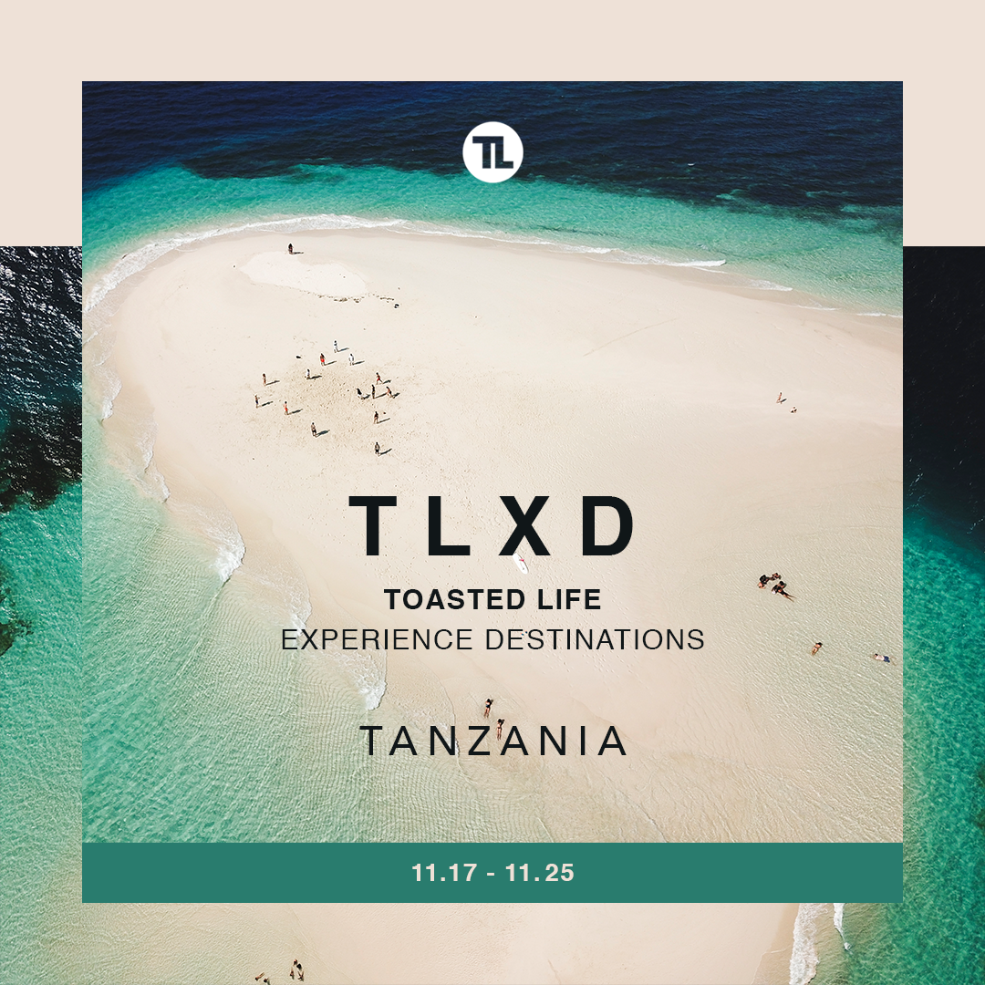TLXD1 (1).png