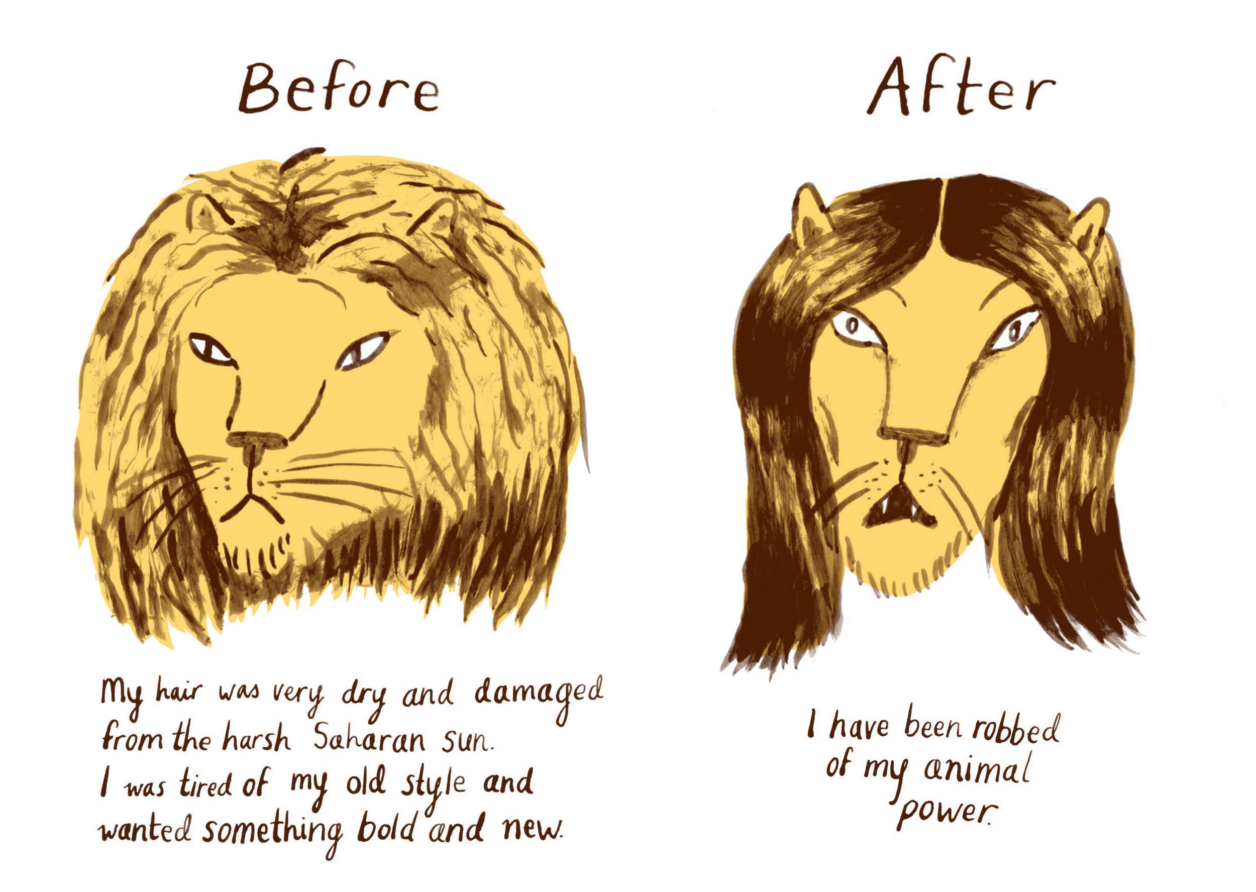 animal-power-new.jpg