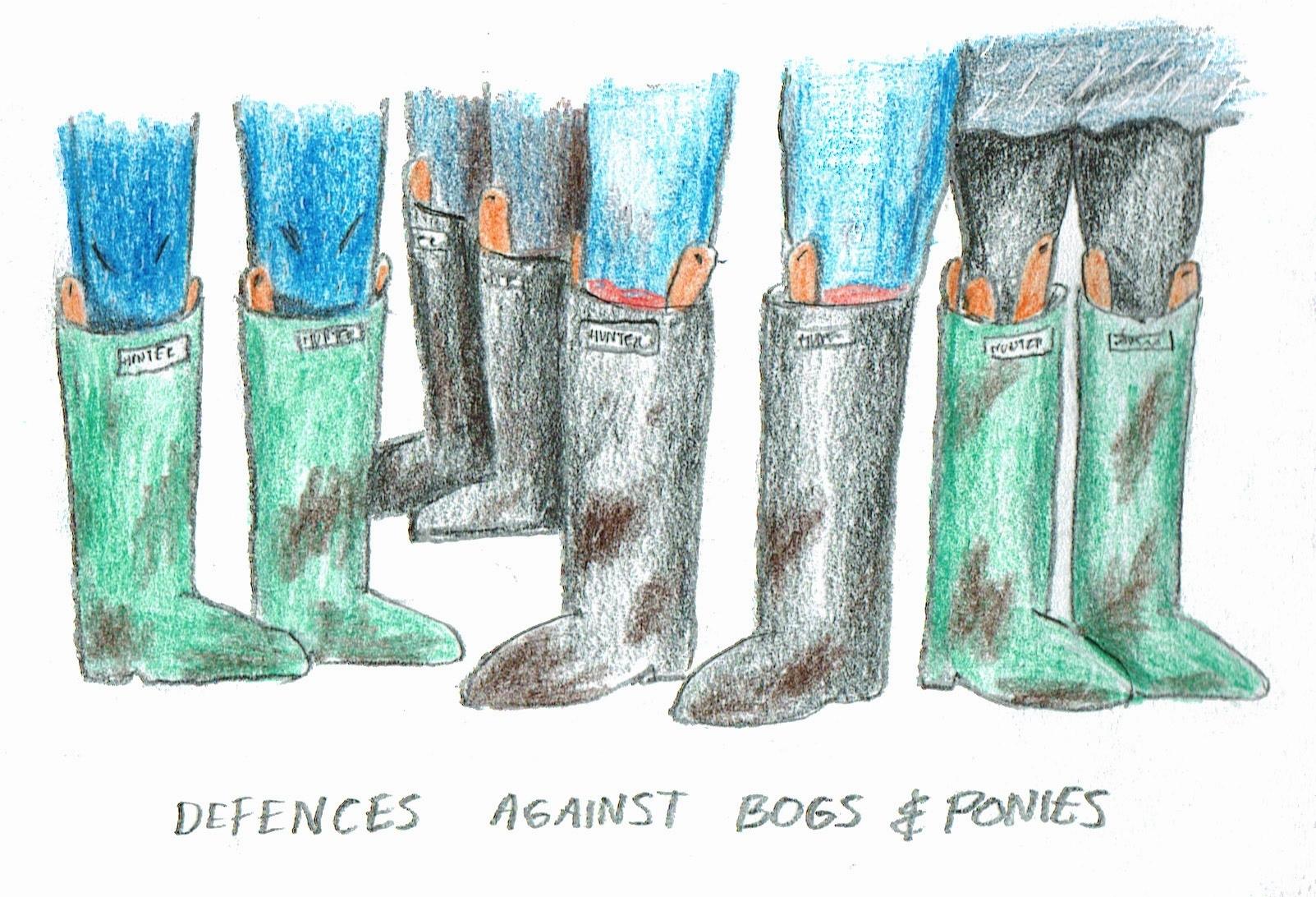 defences2.jpg