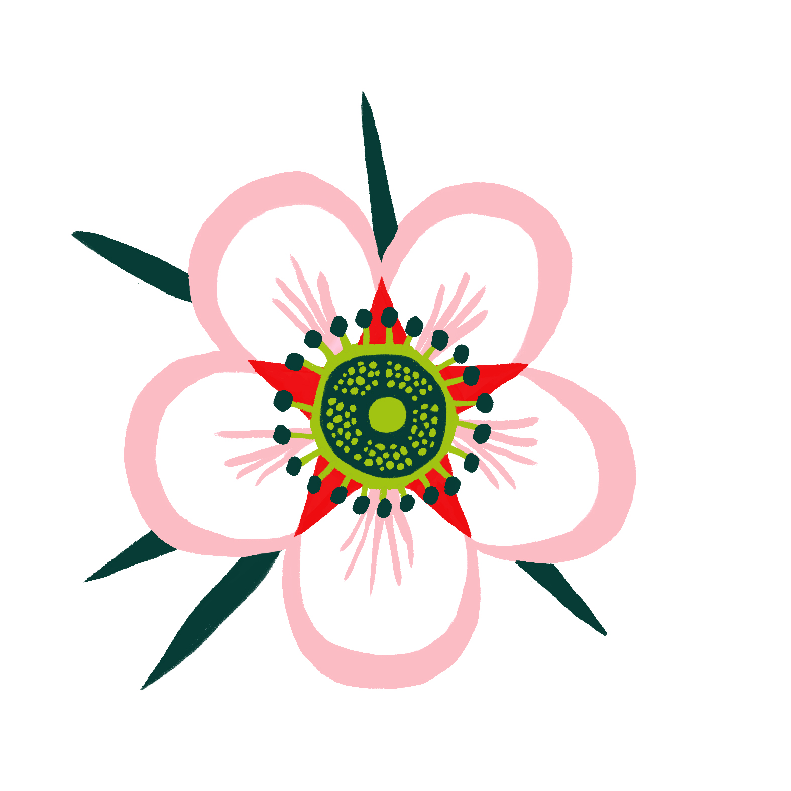 Single-flower2.jpg