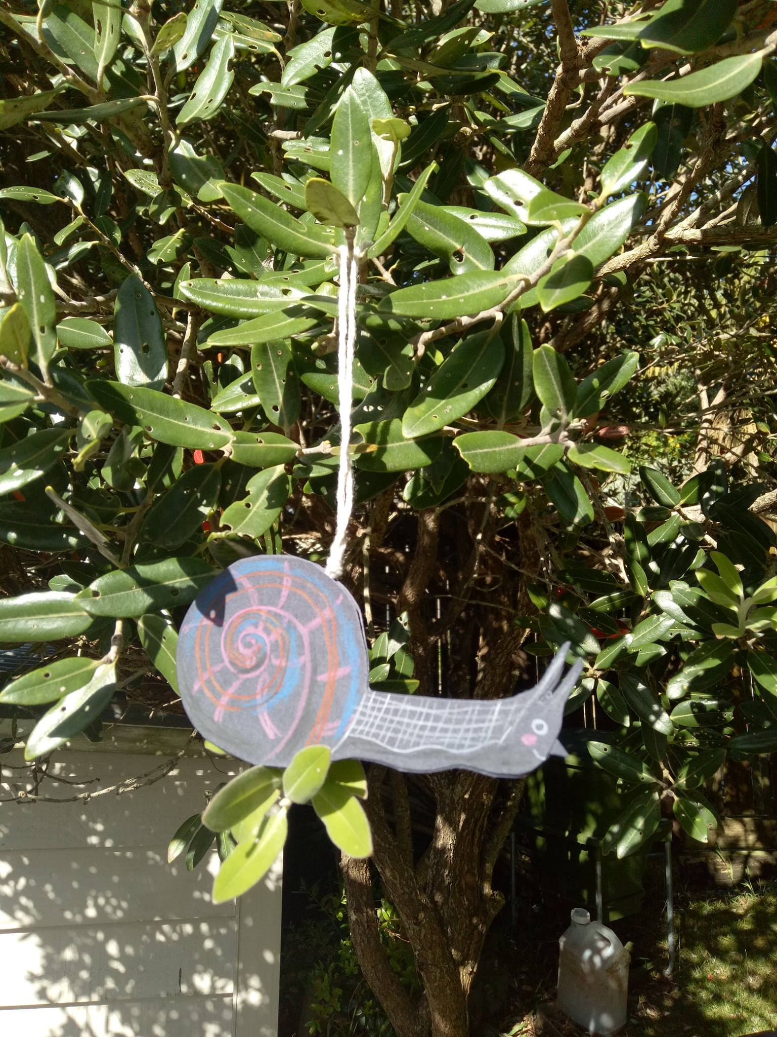 Paper cut snail - coloured pencil on paper. Paper ornament workshop example .