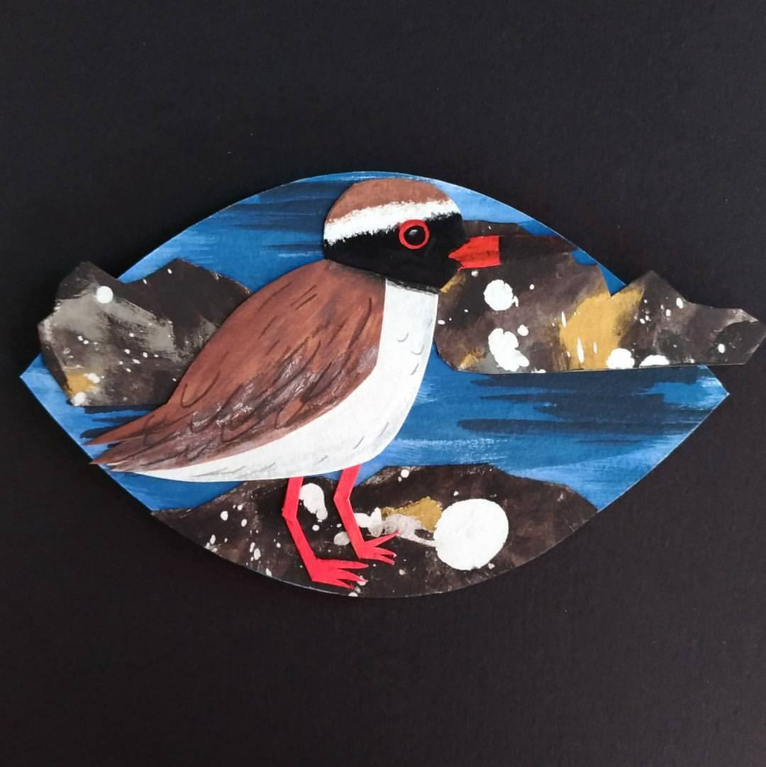 Tuturuatu/Shore plover -painted paper collage. Made for Seed Gallery's A New Leaf exhibition