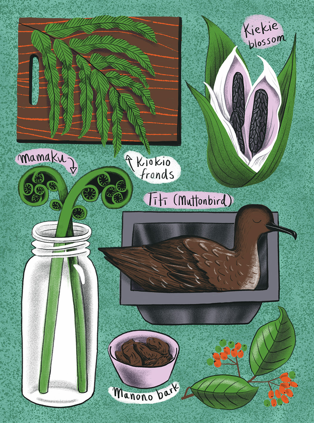 Aotearoa/NZ native ingredients for Cuisine Magazine