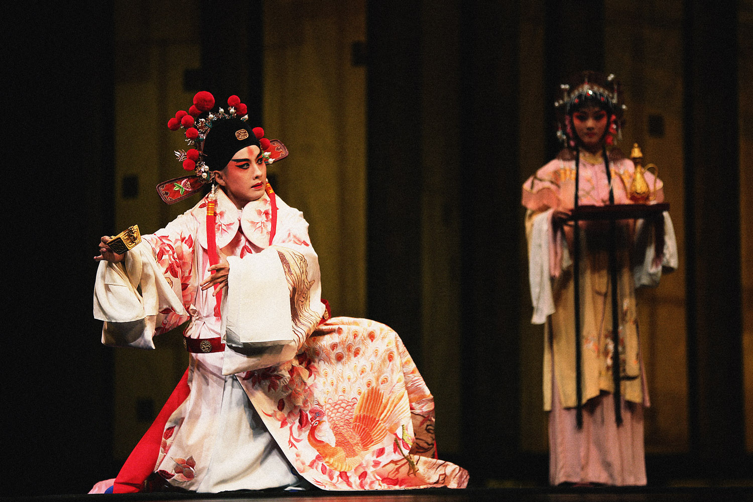 Kun Opera: A Dream under the Southern Bough