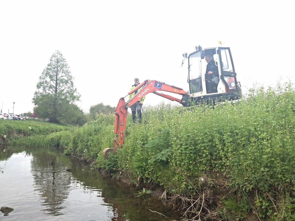 Ecological mitigation: Water vole exclusion