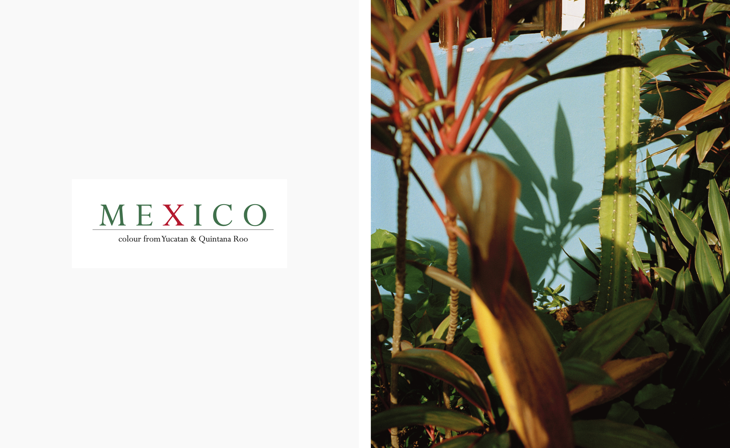 Mexico_Layout_PH-001.jpg