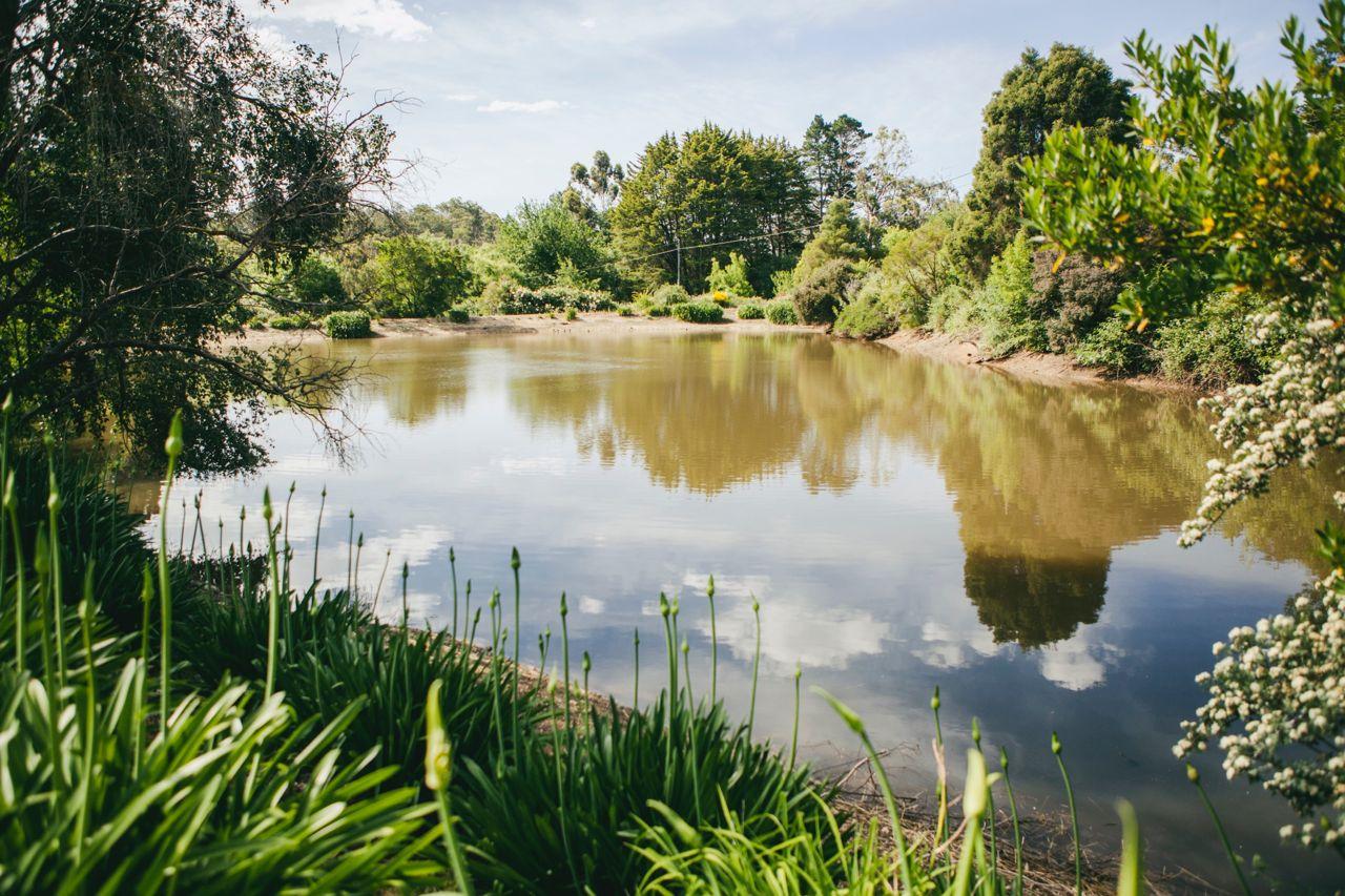 Our lovely lake. Photo Jennifer Sando.