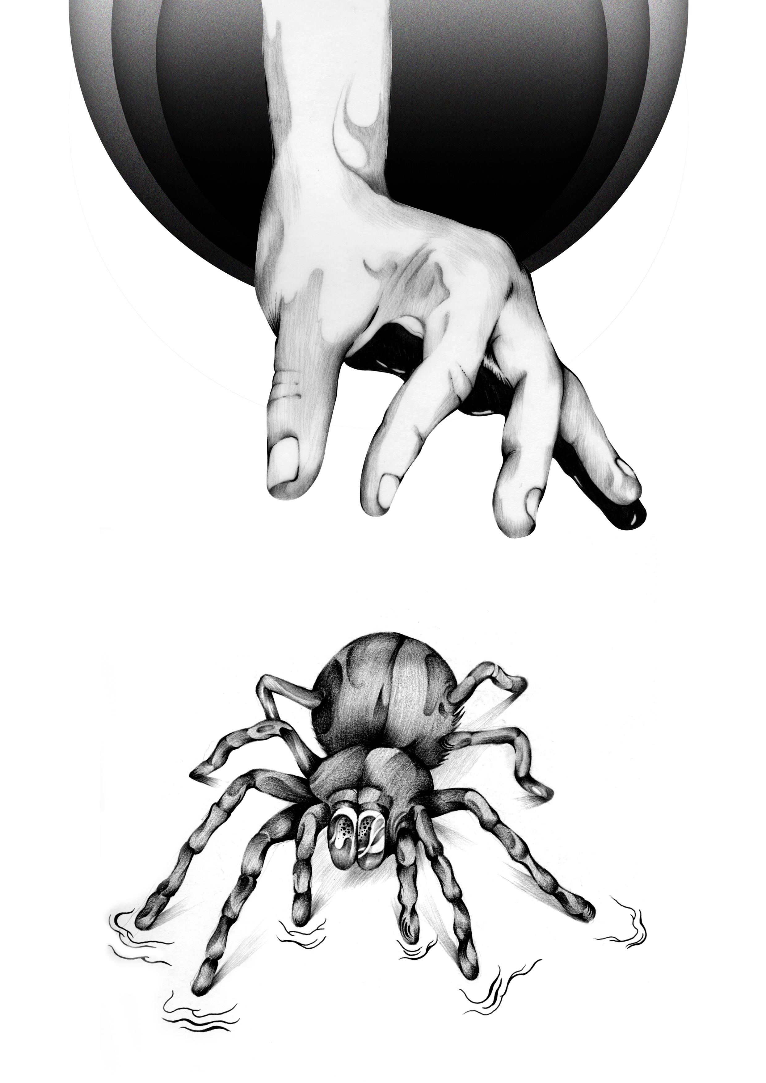 The Spider.jpg
