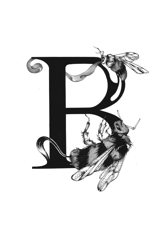 300 dpi-B Bee.jpg