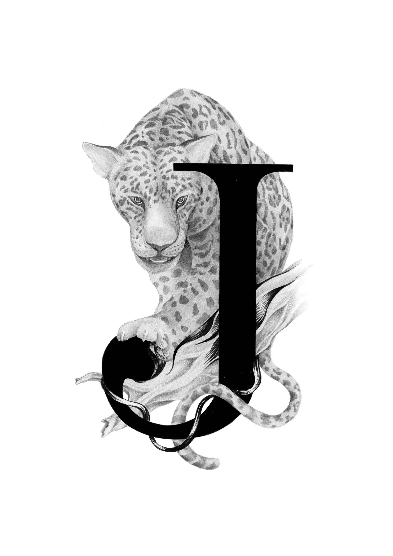 300 dpi-J Jaguar.jpg
