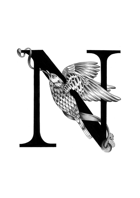 300 dpi-N Nightingale.jpg