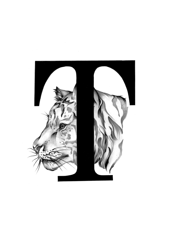 300 dpi-T Tiger head.jpg