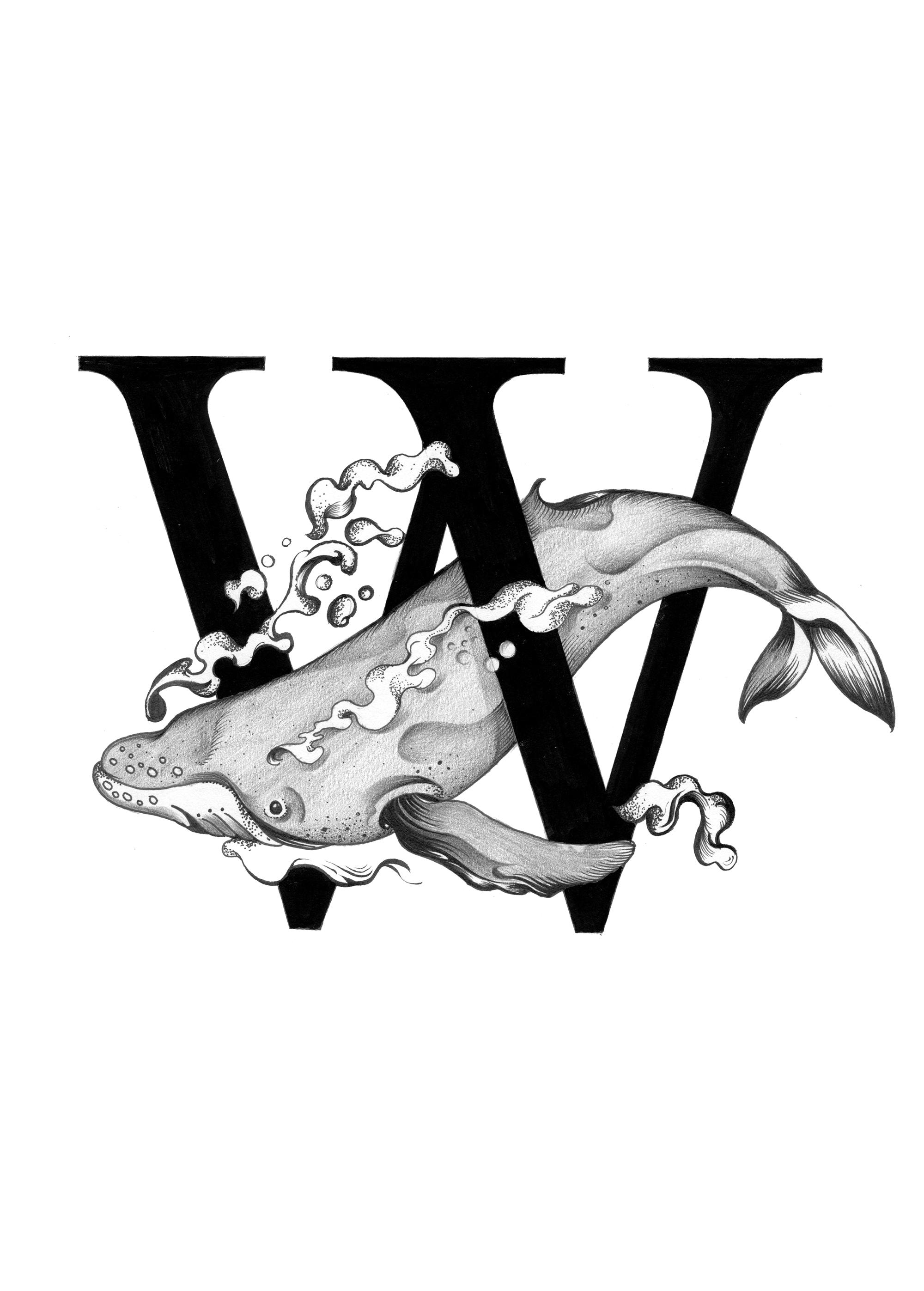 300 dpi-W Whale.jpg