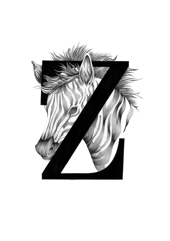 300 dpi-Z Zebra.jpg
