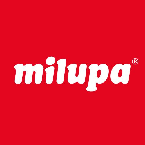 Mesh_Milupa.png