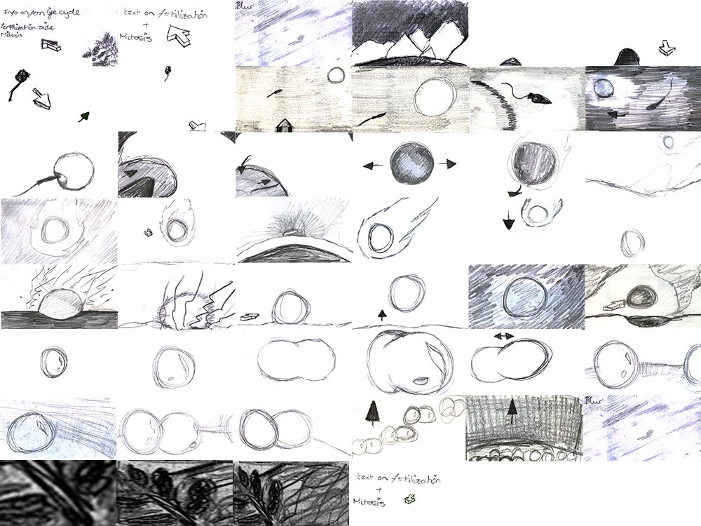 science_storyboards_3.jpg