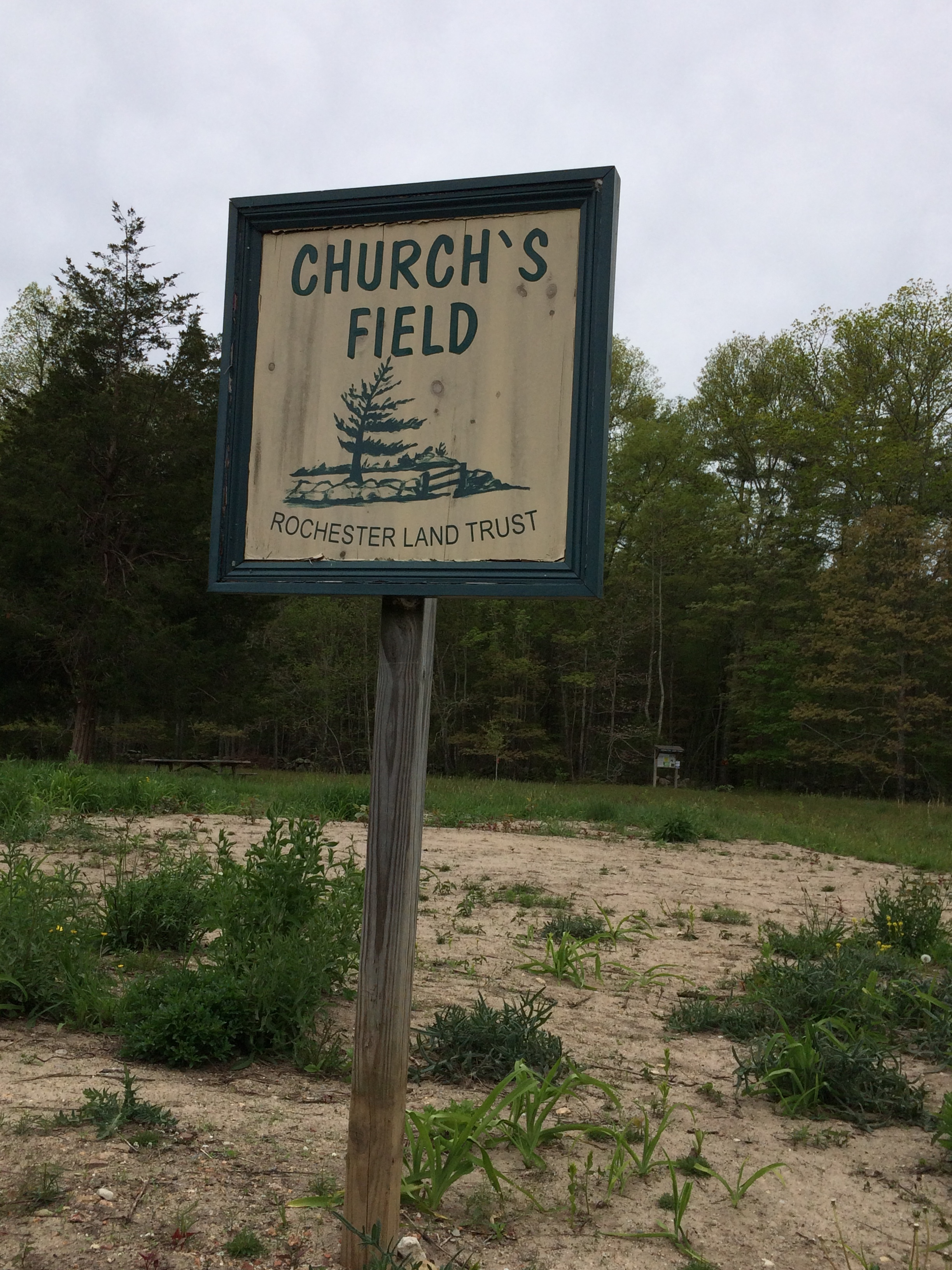 Church's Field