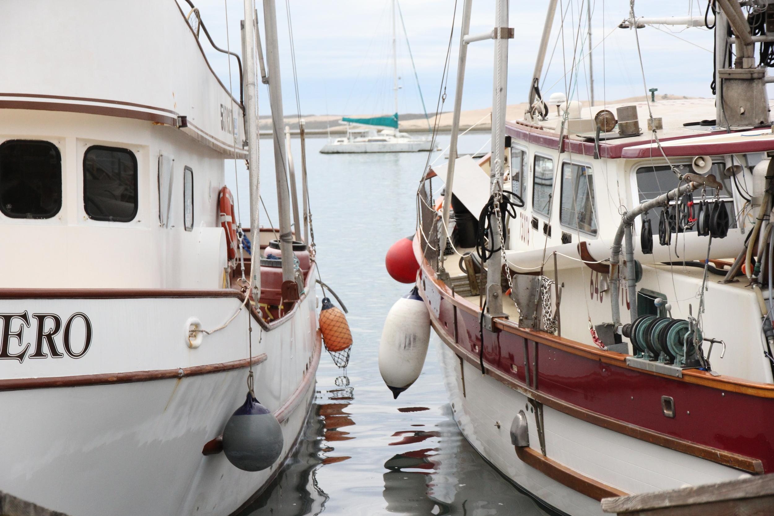 Morro Bay_120425 (41).JPG