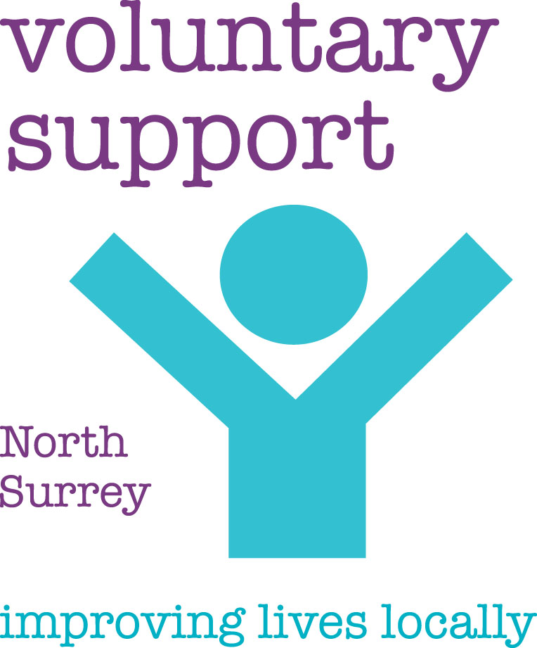 Voluntary Support Logo with strap.jpg