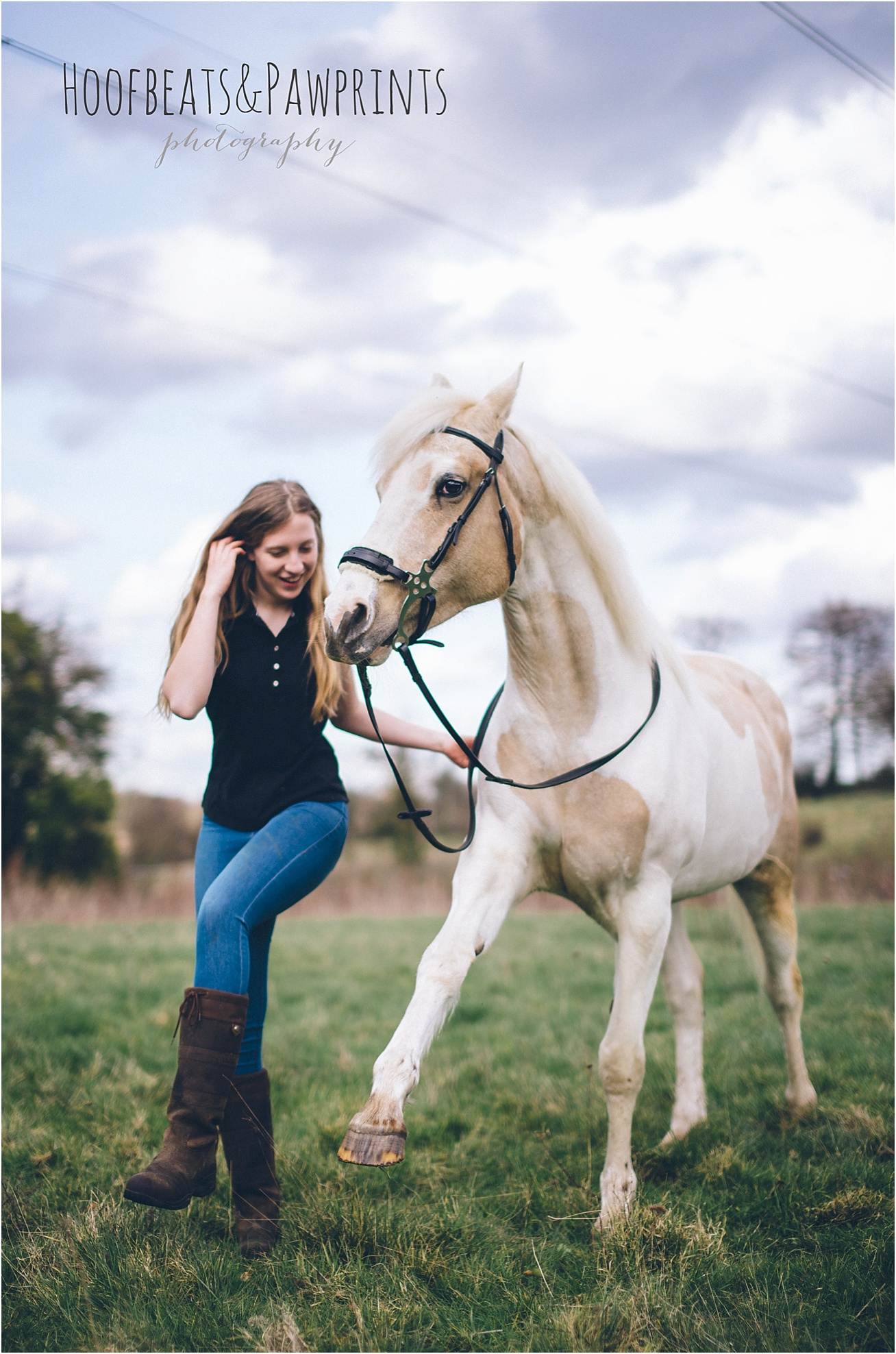 equine photographer surrey
