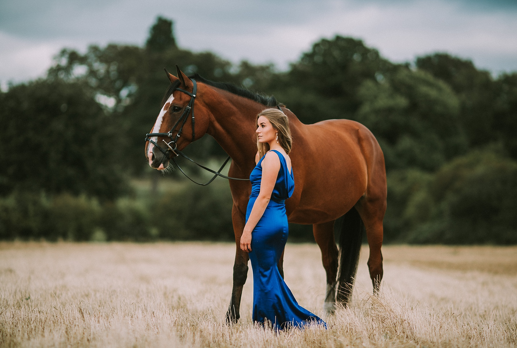 horse photographer in the south east uk