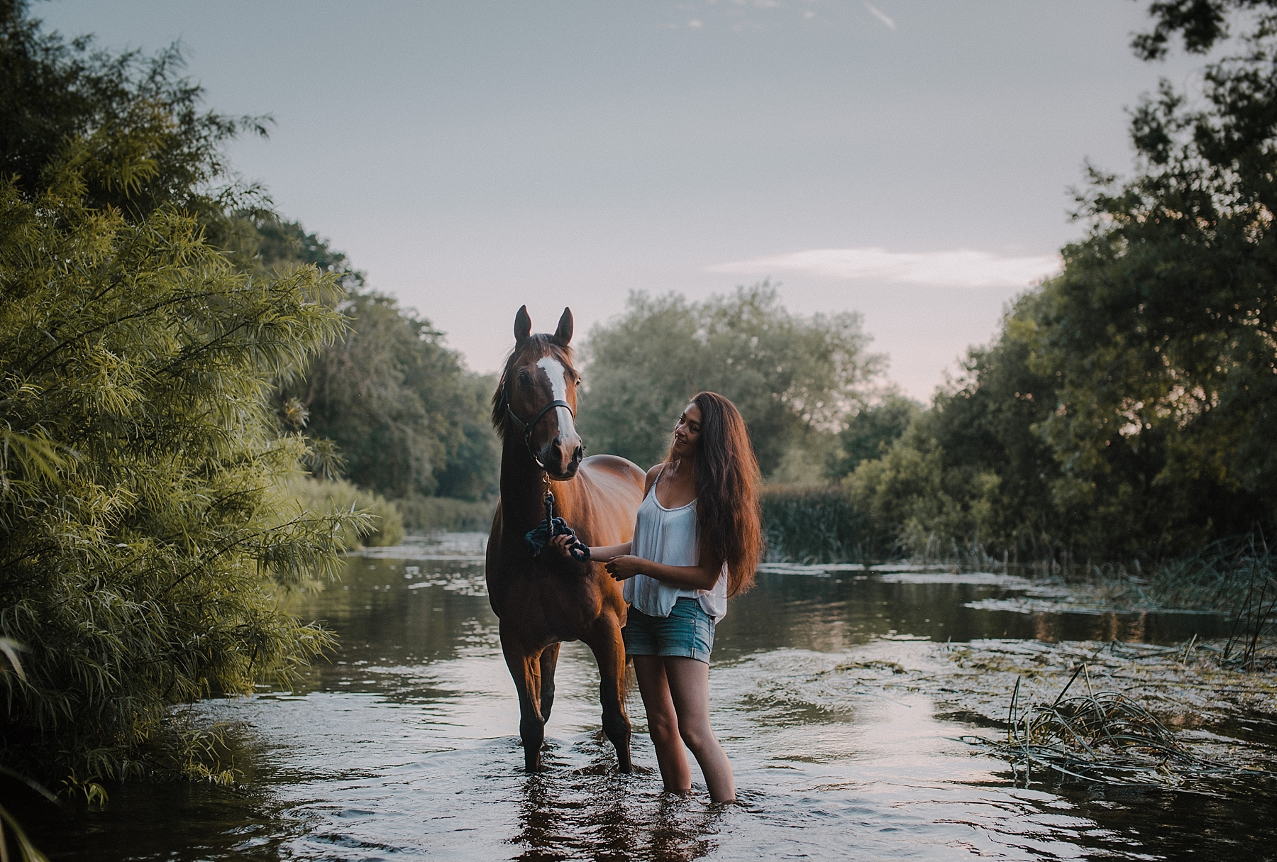 Horse photographer in Hampshire