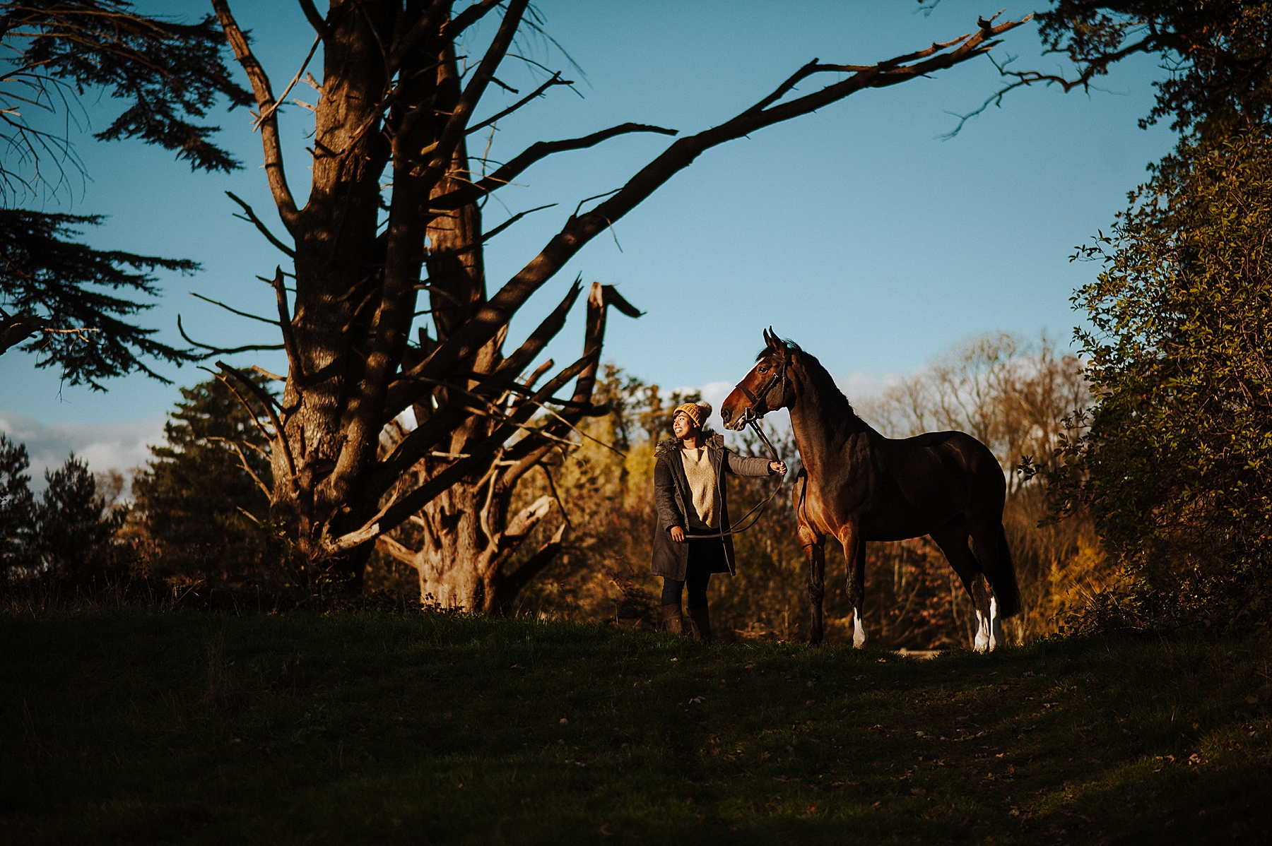 horse photographer in kent