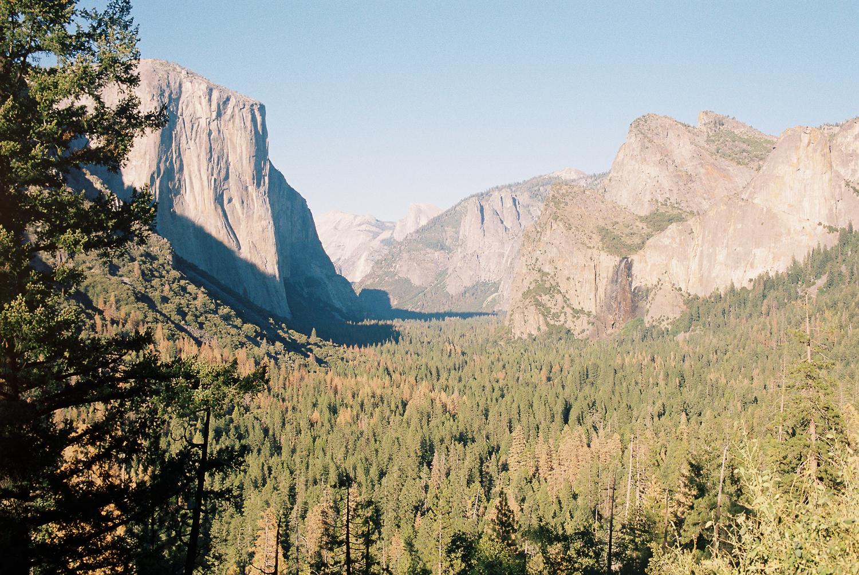 california_film-13.jpg