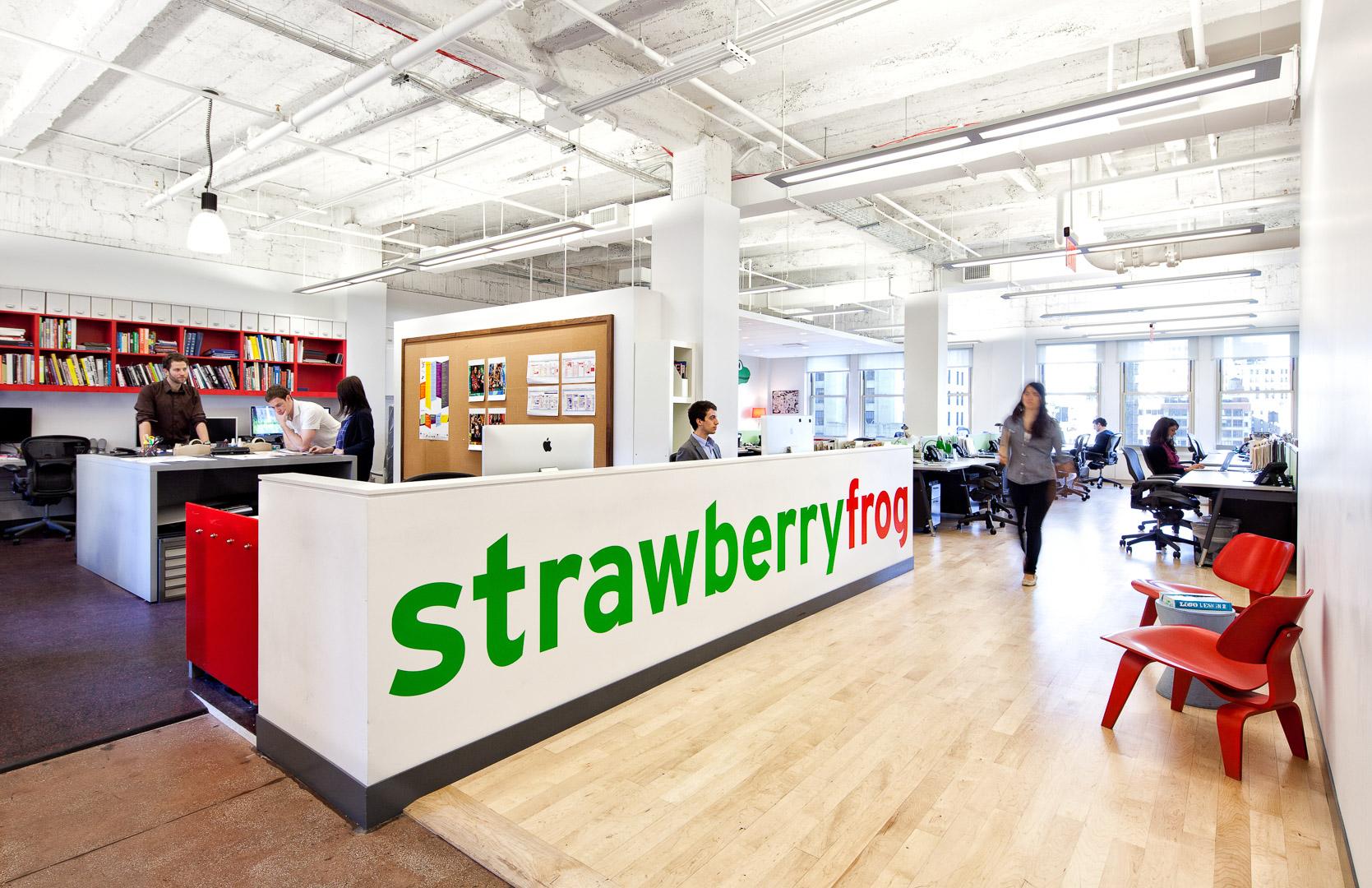 StrawberryFrog-1.jpg
