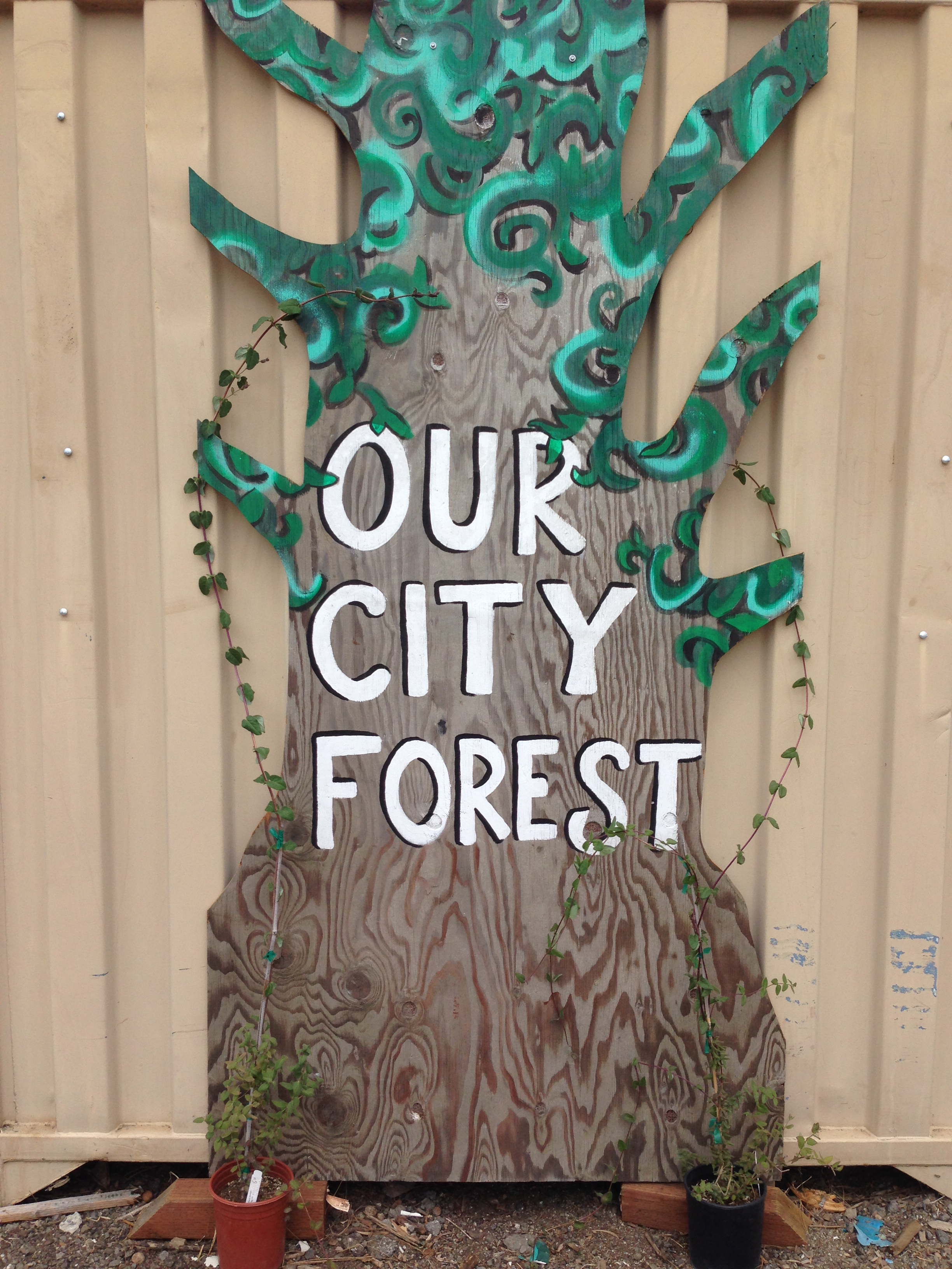 COMMUNITY ART INSTALLATION AT THE OCF NURSERY FOR PEOPLE TO ADD THEIR PERSONALIZED TREE WISH.