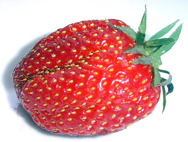 "The strawberry, or should I say ""straw achene accessory fruit"". (  David Monniaux  - Own work  CC BY-SA 3.0 )"