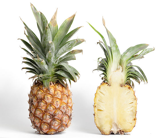 Pineapples are the most famous multiple fruit. Each cell is from an individual flower that develops into a massive fruit. (By Taken byfir0002 | flagstaffotos.com.au  GFDL 1.2 ,)