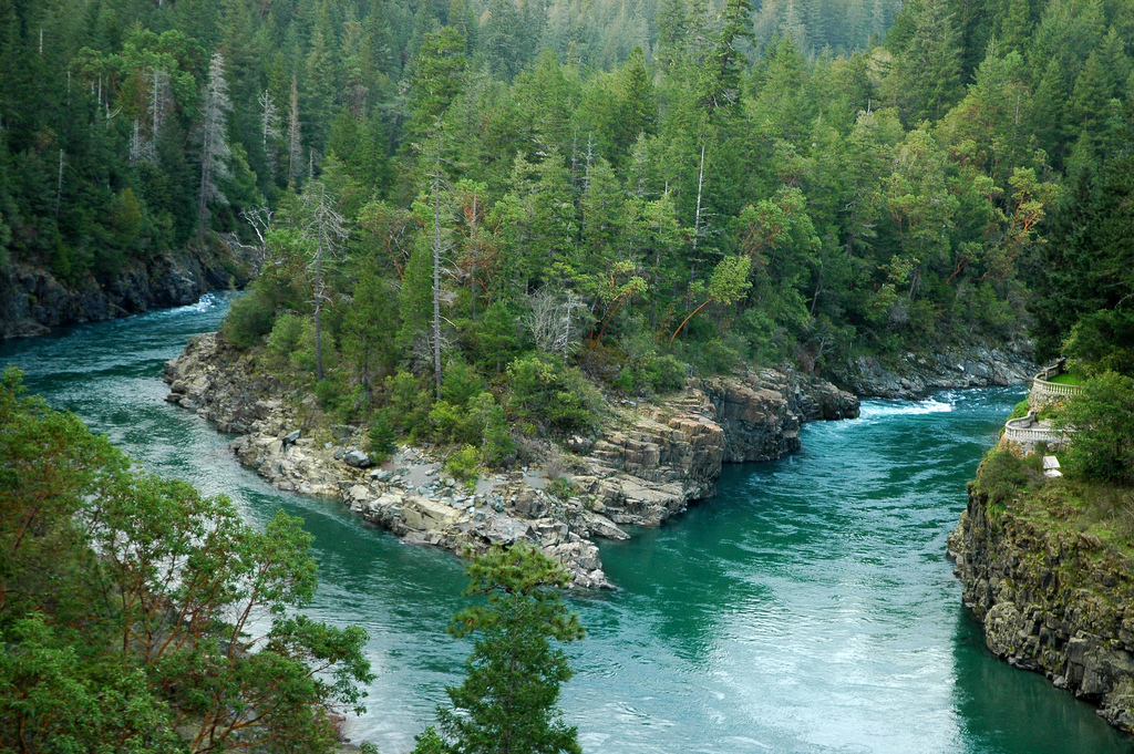 The Smith River where the South Fork Branches off (By  Clinton Steeds ,  CC 2.0  Source )