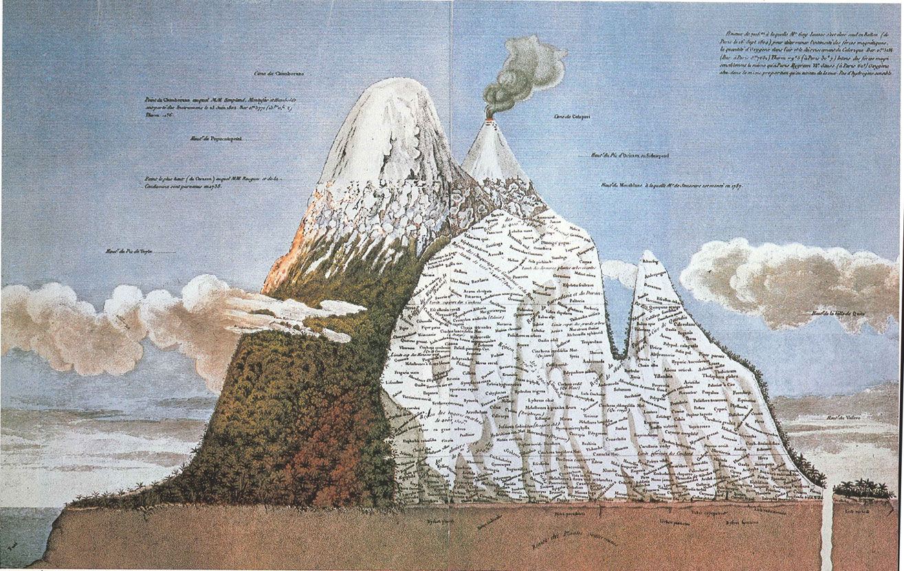 Humboldt produced a number of plant maps against elevation. Here we see plants grouped by genus and species arrayed against the mountain. ( source )