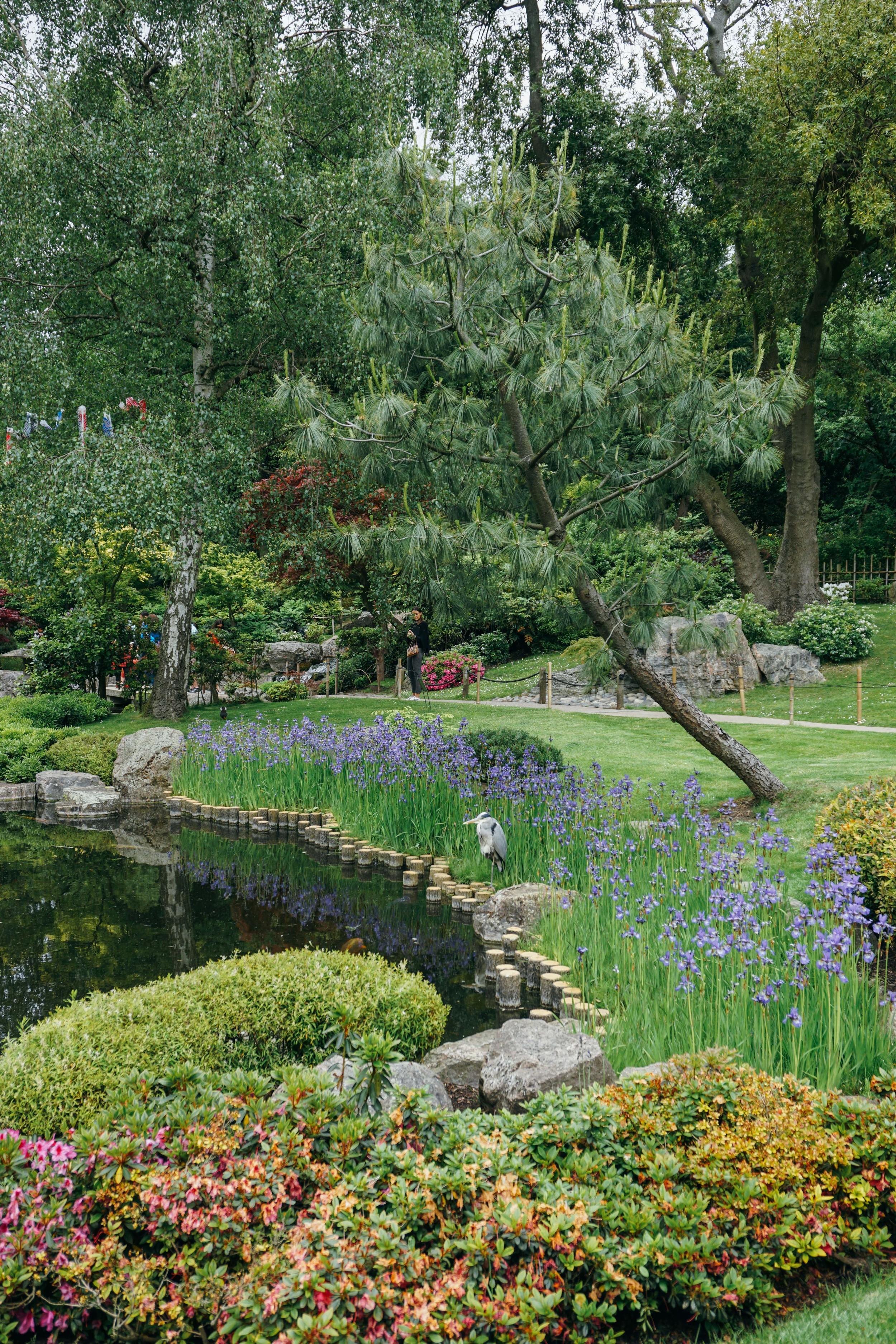 Kensington Palace Gardens. Japanese Garden.