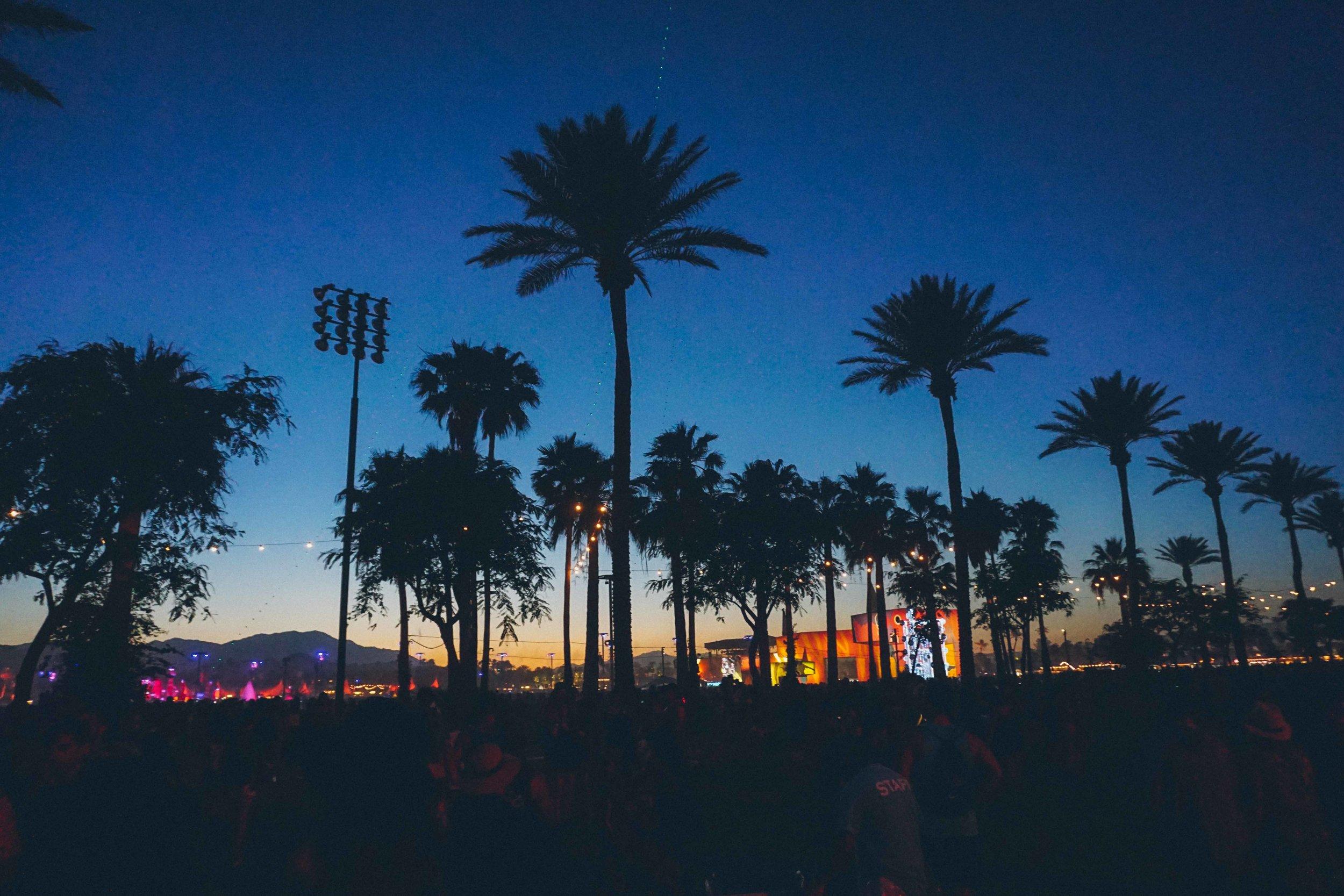 Coachella Festival Outfit