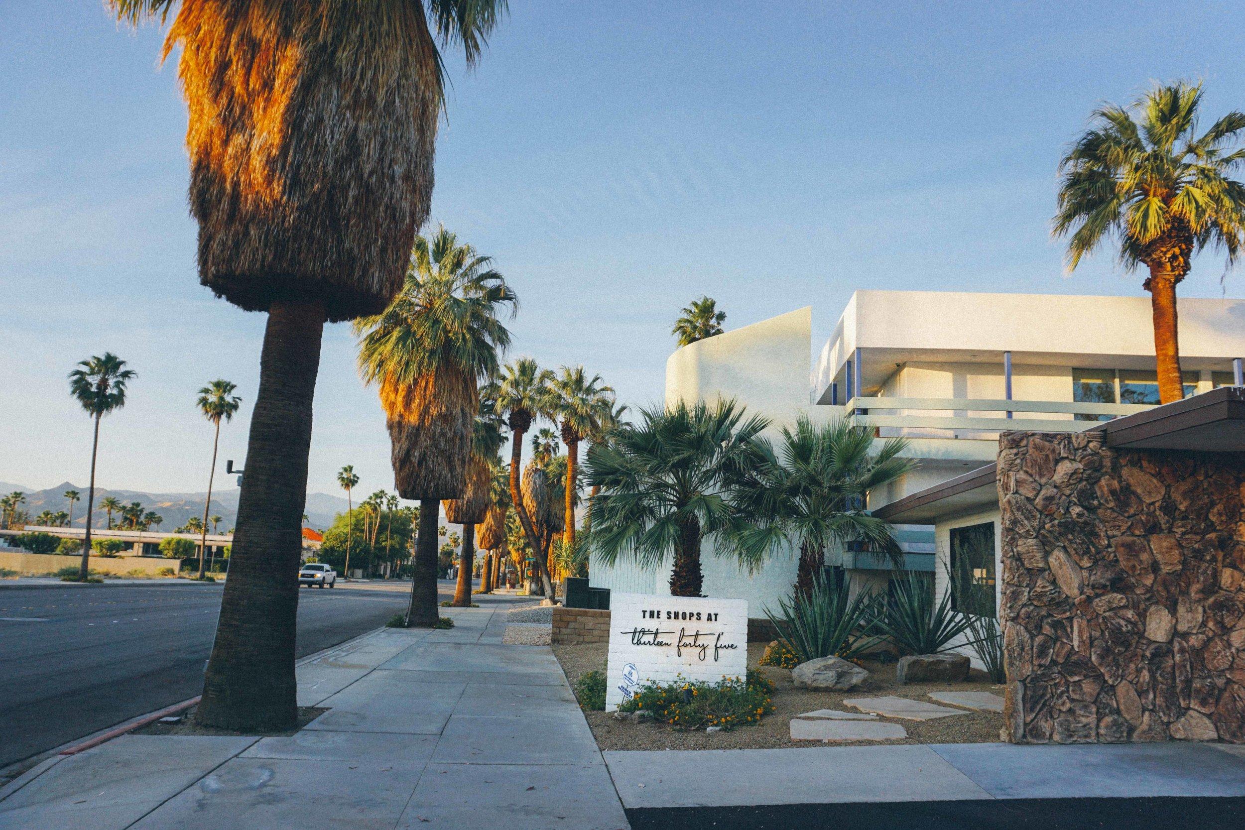 Palm Springs Hotel, Coachella Festival
