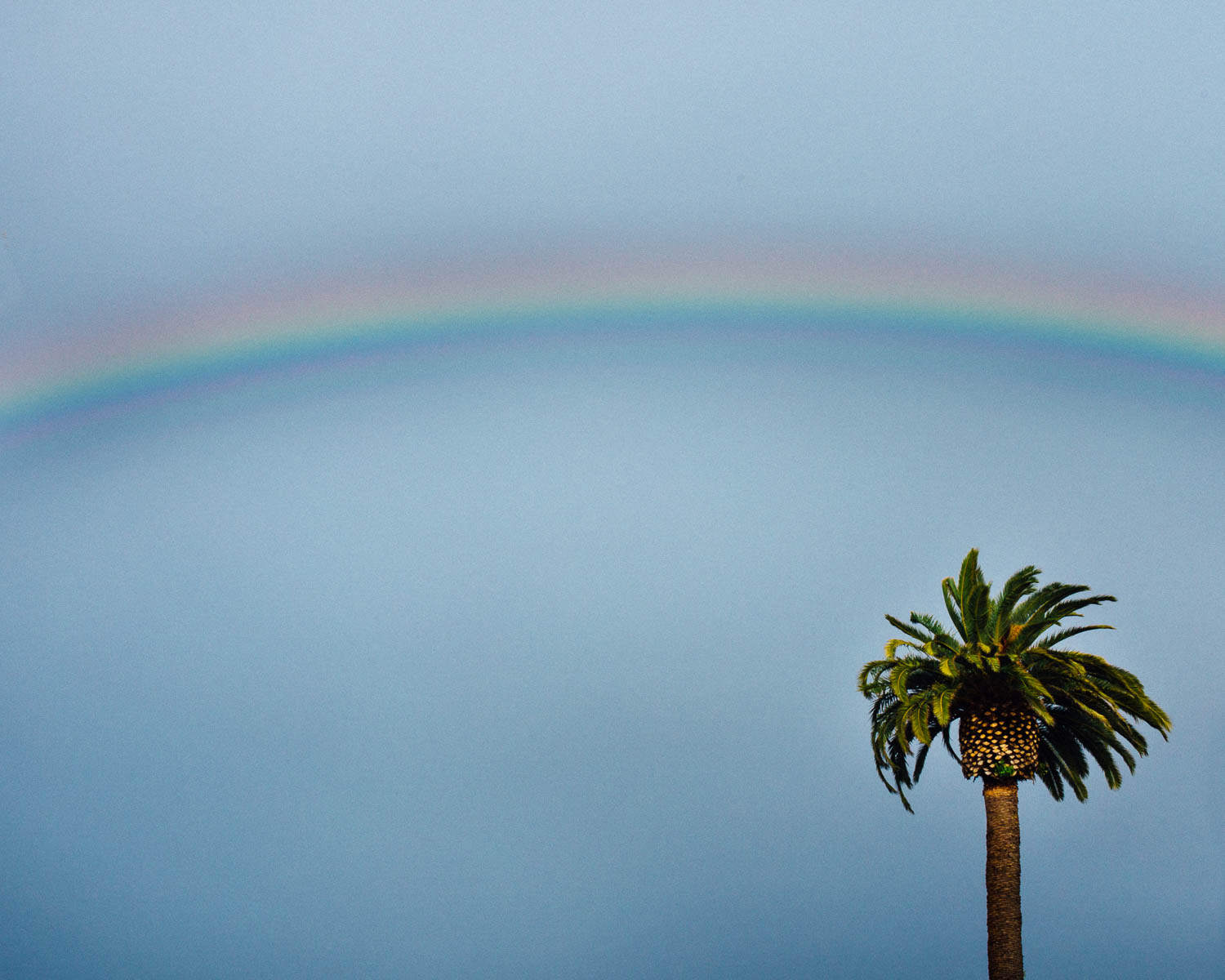 Rainbow_juliisolaphotography (1 of 1).jpg