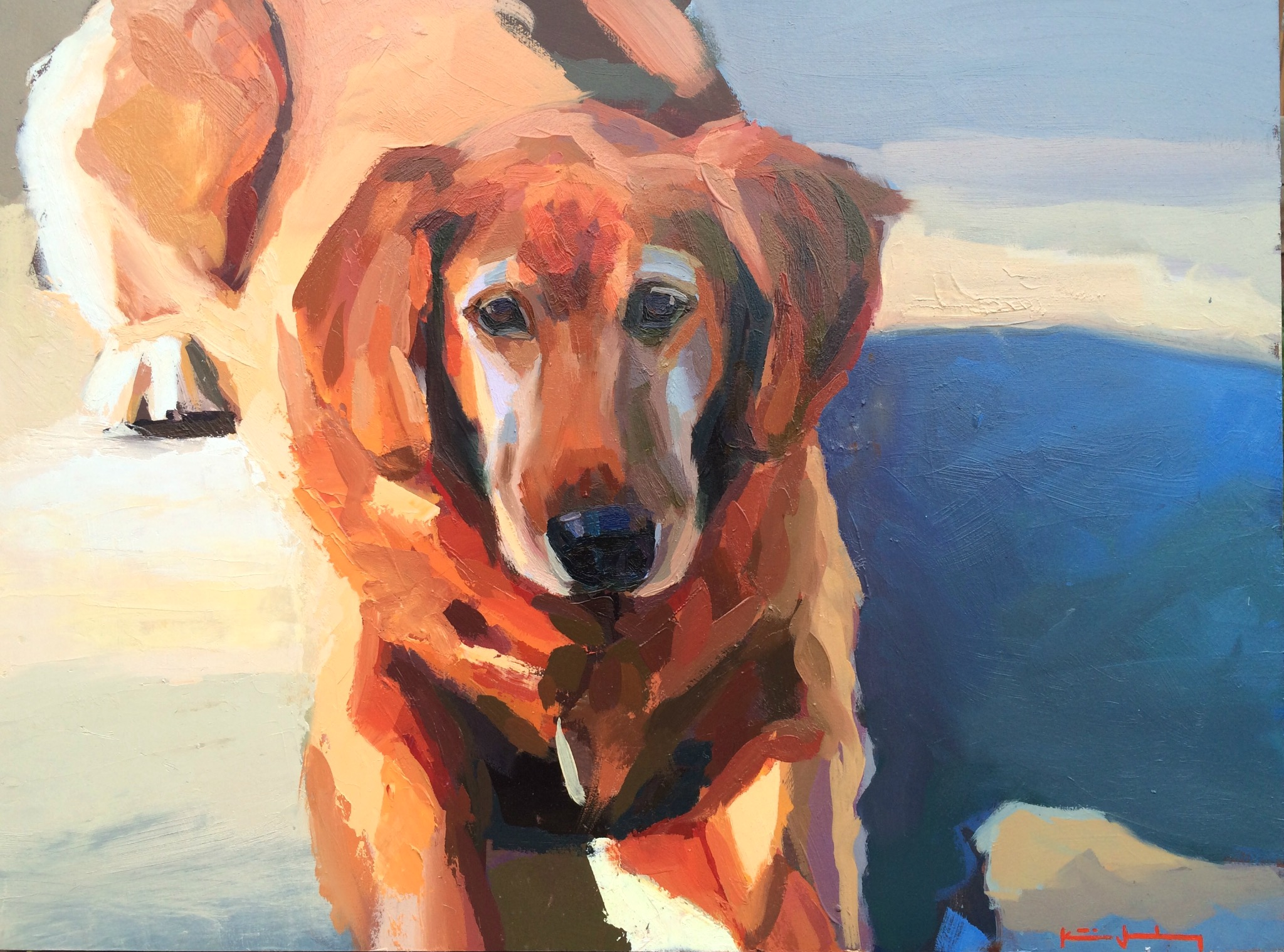 2015- Cooper Dog Portrait.jpg
