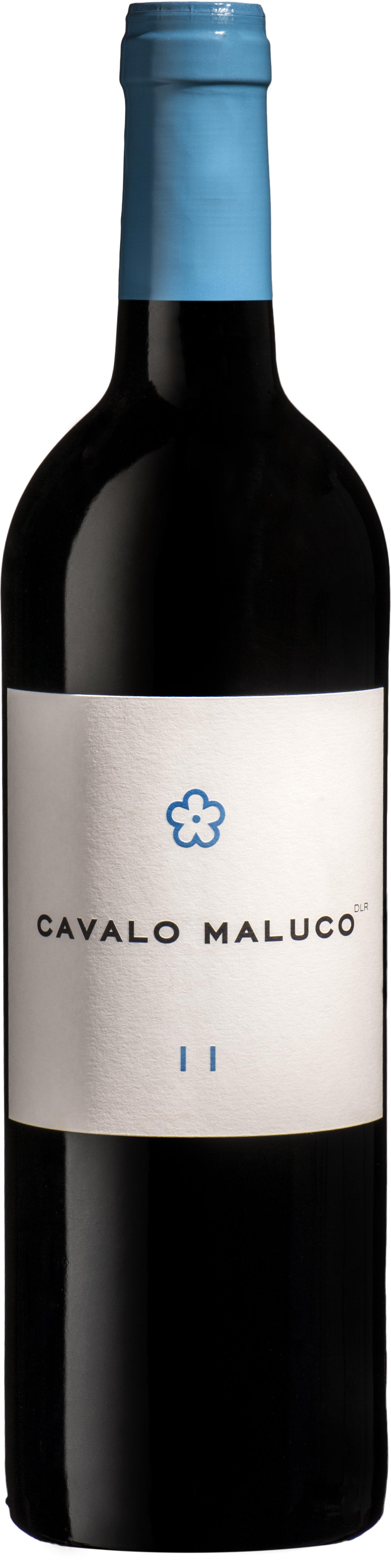 CAVALO MALUCO | 2011