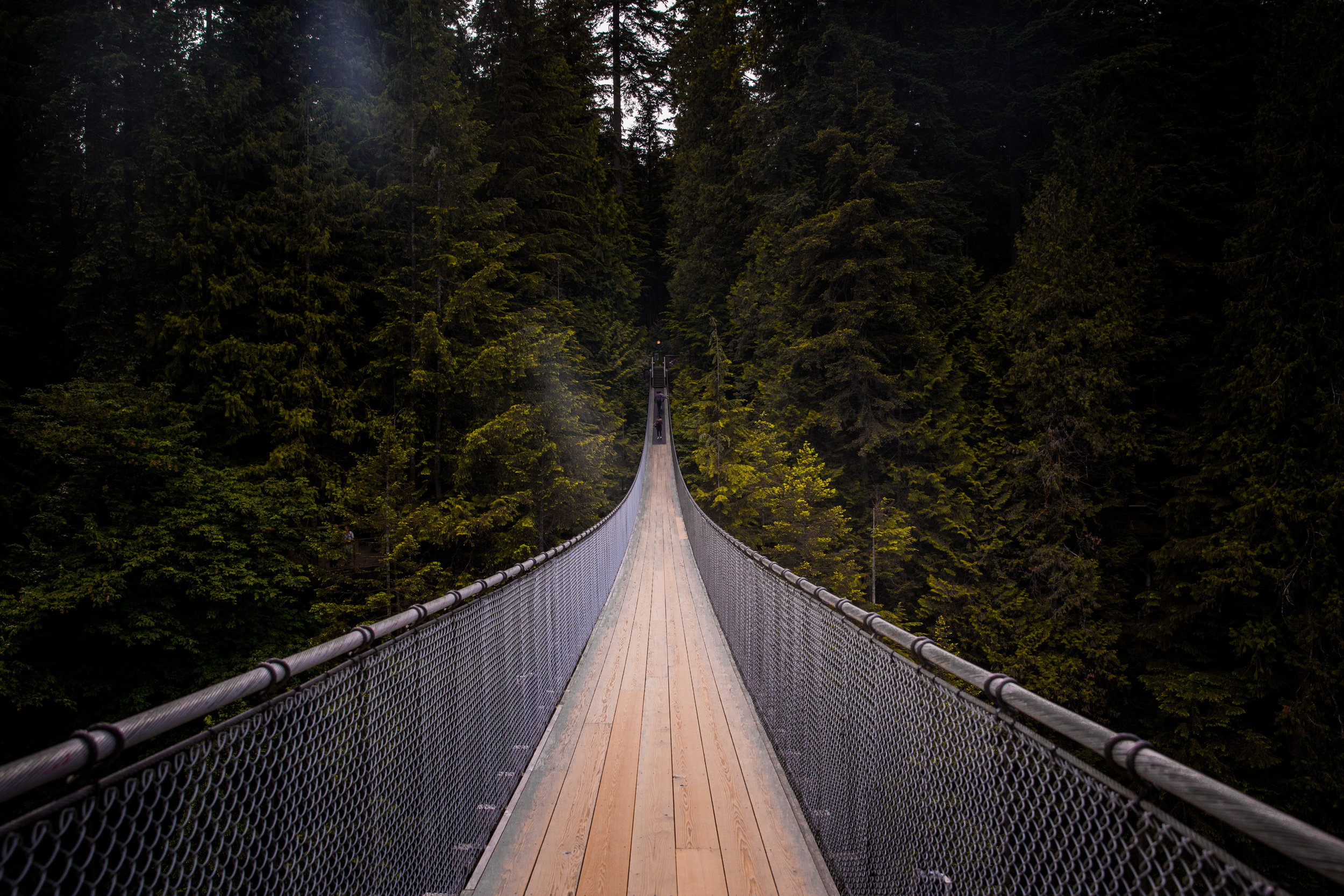 Capilano (1 of 1).jpg