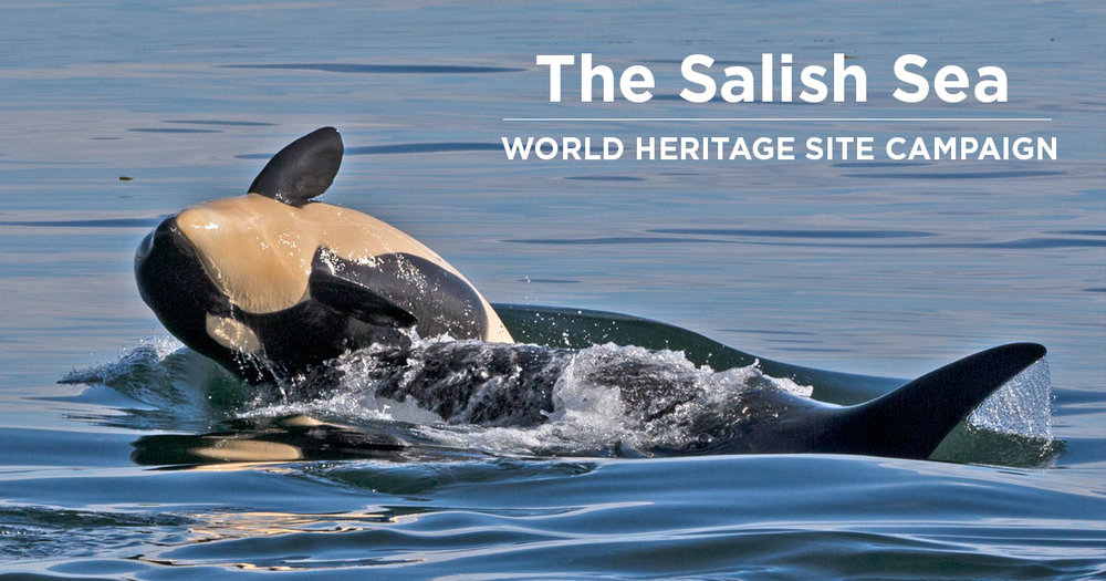 salish-sea-world-heritage