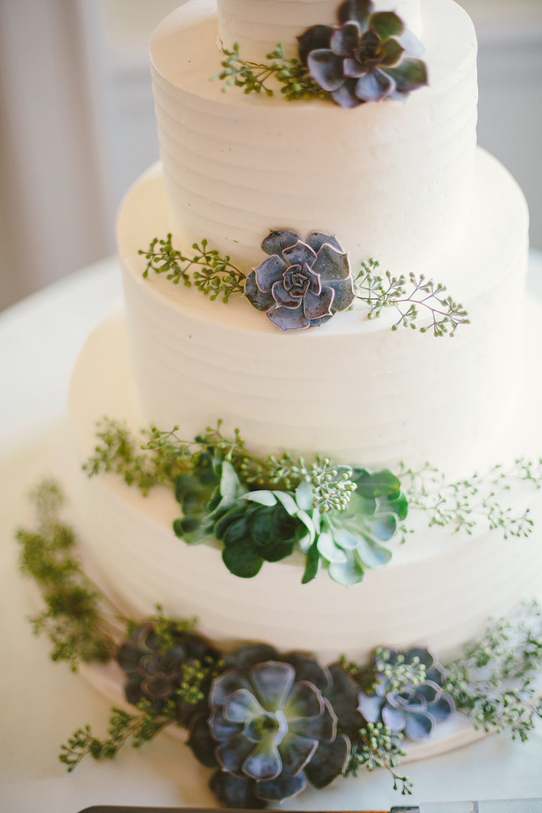 24 Wedding cake with succulents.jpg