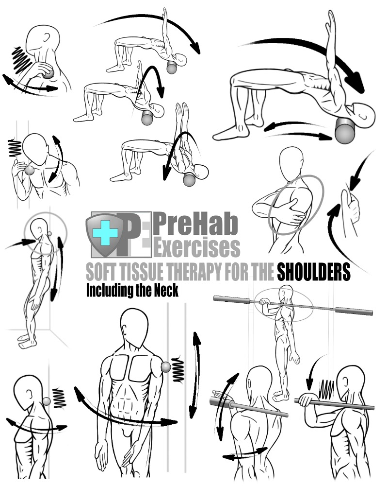 PreHab-Exercise-Book-Appendix-Soft-Tissue-Therapy-for-the-Shoulders-and-Neck-Deltoids-Trapezius-Scalenes.jpg