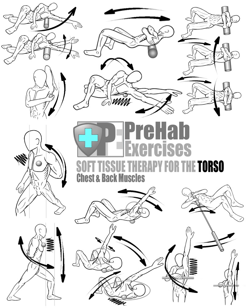 PreHab-Exercise-Book-Appendix-Soft-Tissue-Therapy-for-the-Torso-Chest-and-Back-Pectorals-Latissimus-Dorsi-Rhomboids-Trapezius.jpg