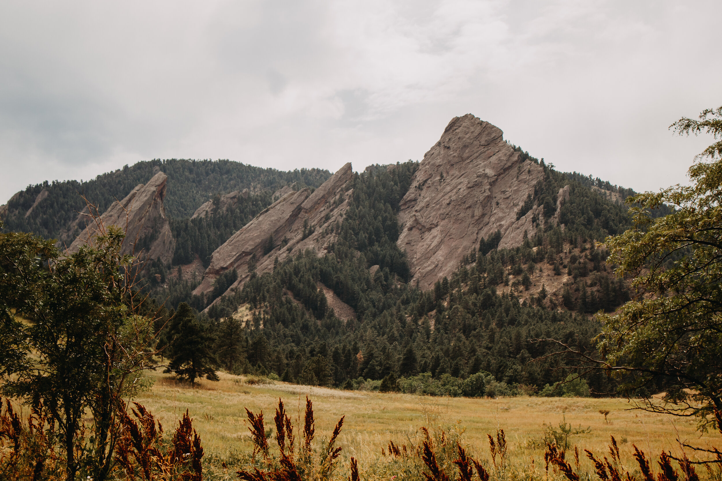 All three Flat Irons from our starting point! The peak on the left is where the Royal Arch is located.